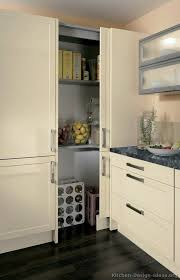 Where Can I Buy Kitchen Cabinets Kitchen Outstanding Sliding Pantry Doors Inside Attractive