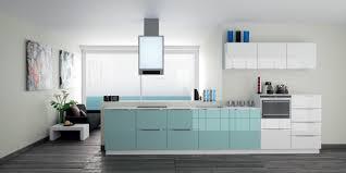 cuisine verte et grise le bleu nouvelle star de la cuisine diaporama photo