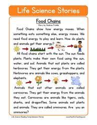 printable comprehension stories second grade reading comprehension worksheets teaching