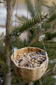 top 10 diy bird feeders to make with kids top inspired
