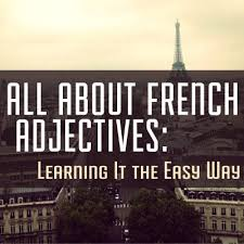 133 best french adjectives images on pinterest french lessons