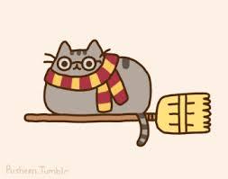 Pusheen Cat Meme - lolcats pusheen lol at funny cat memes funny cat pictures