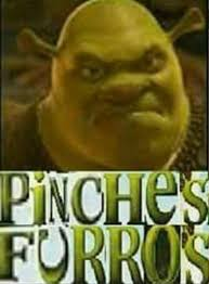 Pinches Memes - shrek has enough with these furries expand dong know your meme