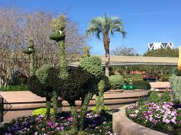Mickey Mouse Topiary Epcot International Flower And Garden Festival 2015 Run The