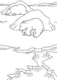 coloring polar bears nap picture