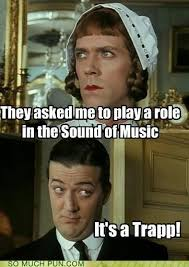 Sound Of Music Meme - puns the sound of music funny puns pun pictures cheezburger