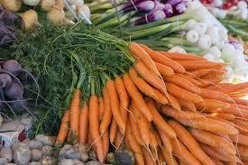 cuisiner la vieille maison jardin cuisine brocante comment planter des carottes