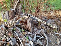 Color Blind Camouflage Camo Dipping Specialists Camouflage Rifles Bows Shotguns