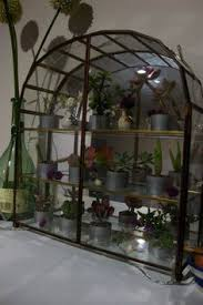Indoor Plant Arrangements Indoor Plant Arrangements Item E2348 House Plants Pinterest