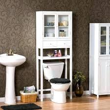Bathroom Cabinet Above Toilet Above The Toilet Storage Terrific Bathroom Cabinet Toilet