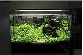aquarium design exle amazon com aquarium light stand for aquatic led light l