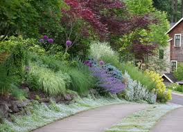 iris garden design landscape traditional with green flowers