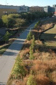the atlanta beltline eastside trail picture of trees atlanta
