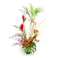 tropical flower arrangements tropical flower arrangements