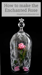 Forever Rose In Glass Dome Beauty And The Beast Rose And Glass Cloche Simple Practical