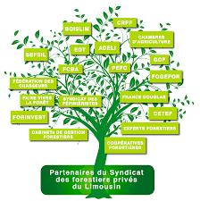 chambre d agriculture creuse organismes et services publics fransylva syndicat des forestiers