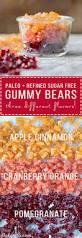 paleo gummies three flavors apple cinnamon pomegranate