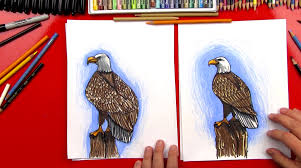 how to draw a realistic bald eagle art for kids hub