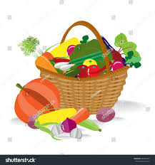 basket fresh organic vegetables farming background stock vector