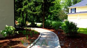 native plant landscaping what is a native plant anyway part 3 u2013 r u0026a water features and
