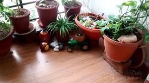 Gardening Ideas For Small Balcony by Mini Garden Decor For Modern Balcony Decoration House Media
