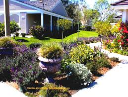 landscaping ideas for cheap no grass image of small front yard