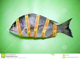 radiation ocean fish food fukushima royalty free stock photography