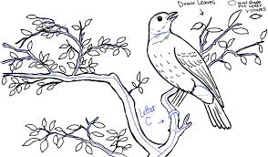 draw bird tree front rolling hills landscape