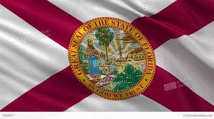 Floridas State Flag Us State Flag Of Florida Seamless Loop Stock Animation 3369917