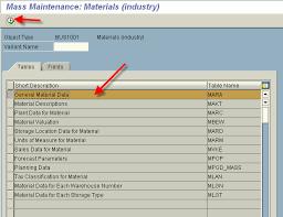 sap t code description table sap123 mass maintenance processing tcode mass