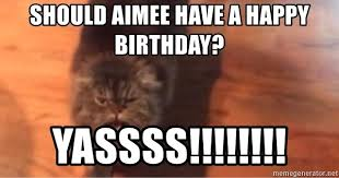 Yassss Meme - should aimee have a happy birthday yassss yassssss cat