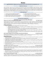 executive resume example incredible design resume prime 5 executive resume samples resume surprising resume prime 2 executive resume samples