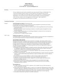 of resume for travel industry