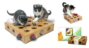 Make Your Own Toy Chest by Does Your Cat Love To Reach Into Small Spaces Here U0027s Why