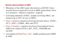 mds class myelodysplastic syndromes ppt