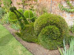 Elephant Topiary 1332 Best Floral Sculpture Images On Pinterest Topiary Garden