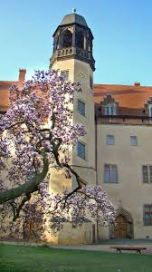 Wittenberg Germany Map by 37 Best Churches In Luthercountry Images On Pinterest Martin