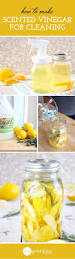 261 best images about squeaky clean on pinterest cleanses