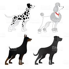 set of different breeds of dogs stock vector art 499515246 istock