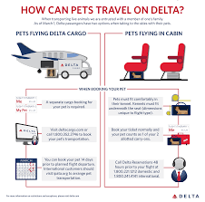 new two options available for pet travel delta news hub
