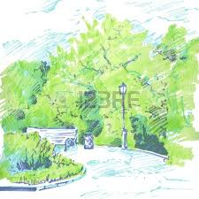 grove of deciduous trees painted graphite pencil at the white