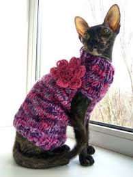 sphynx sweaters pin by nataly on knit