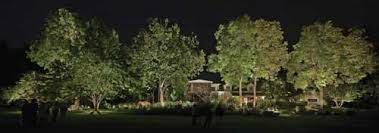 Landscape Lighting Trees It S Just Another New Light Source