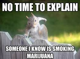 No Time To Explain Meme - no time to explain funny squirrel meme picture min quotes pill