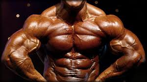 best chest workout fitness