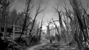 halloween forest background forest wallpapers