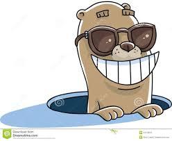 groundhog sunglasses stock illustration image 41570515