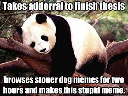 Stoned Dog Meme - takes adderral to finish thesis browses stoner dog memes for two