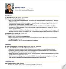 best resume exles free download professional resume sles free download sle professional