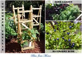 self sufficiency simplified blue jean mama